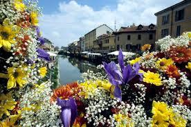 fiori-naviglio