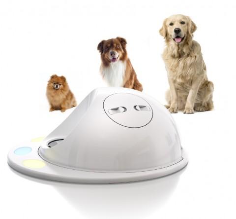 CleverPet il videogioco per cani in prevendita al CES 2016